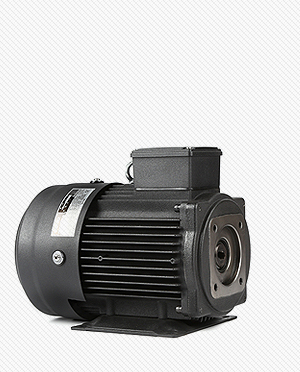 ELECTRIC MOTOR for HYDRAULIC SERIES