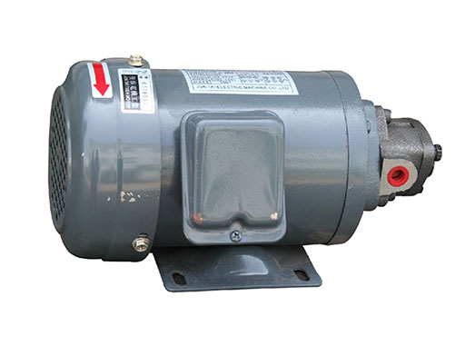 TOP motor combination with lubricating oil pump